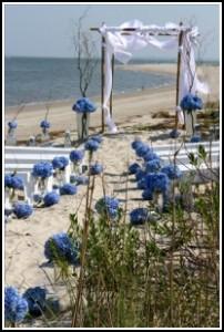 Beach Paridise Wedding Setup